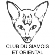 Club du Siamois et Oriental